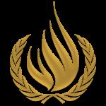 Alto Comisionado de las Naciones Unidas para los Derechos Humanos